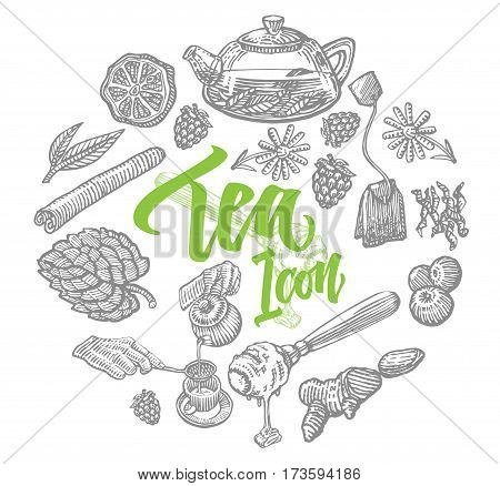 Hand drawn tea elements set with natural organic ingredients and teapot in circle isolated vector illustration