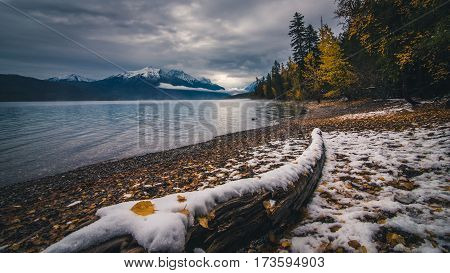 Autumn leaves on winter snow at Lake McDonald.
