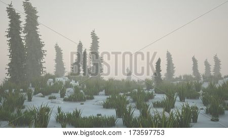 3d illustration of the snowy hill with firs