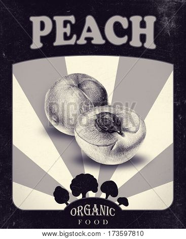 Flyer with peaches drawn by hand with pencil. Retro design. Drawing with crayons. Fresh tasty fruits painted from nature. Tinted black and white