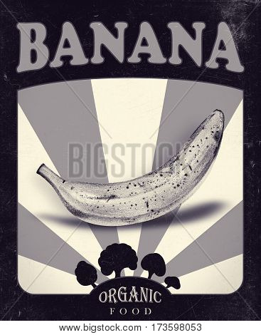 Flyer with banana drawn by hand with pencil. Retro design. Drawing with crayons. Fresh tasty fruits painted from nature. Tinted black and white