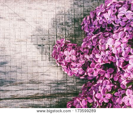 Spring background with a bouquet of lilac flowers on a gray wooden board with space for text