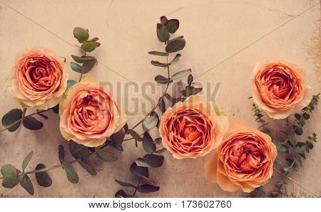 Beautiful beige and orange roses and decorative branches on white textured background, floral arrangement, vintage filtered.