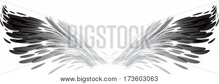 Abstract wings black and white vector illustration isolated on white background
