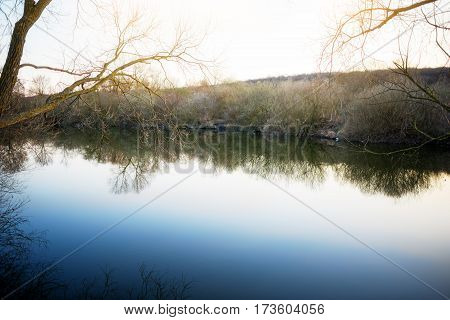 A Small Pond Near The Bare Autumn Trees