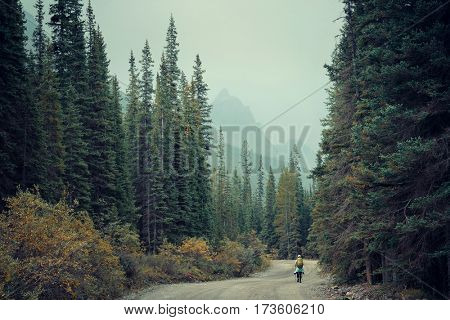 Hiker in wild in Banff national park with mountains and forest in Canada.