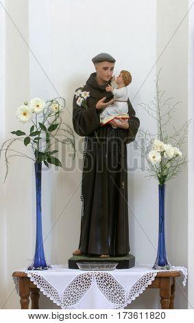 HRVATSKA DUBICA, CROATIA - NOVEMBER 18: Saint Anthony of Padua statue on the altar in Parish Church of Holy Trinity in Hrvatska Dubica, Croatia on November 18, 2010.