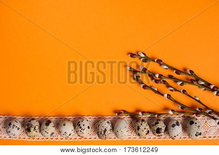 Quail eggs with ribbon on the orange background