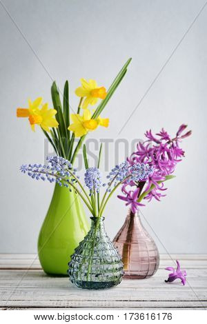 Spring Flowers  Daffodils, Hyacinth And Muscari