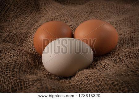 Eggs on jute sacks in brown tint