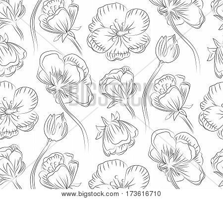 Marsh marigold cowslip king-cup vector floral seamless blossom beautiful nature spring forest flower pattern background with blooming plants hand drawn in black outline isolated white background