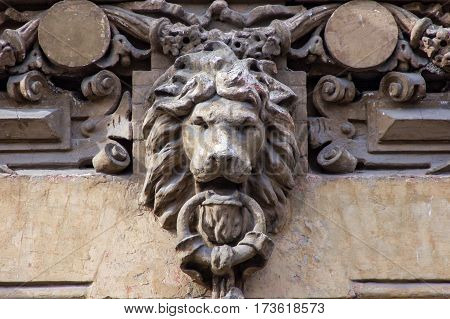 architecture detail on the wall of building with lion's head