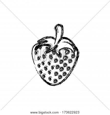 contour strawberry fruit icon stock, vector illustration design