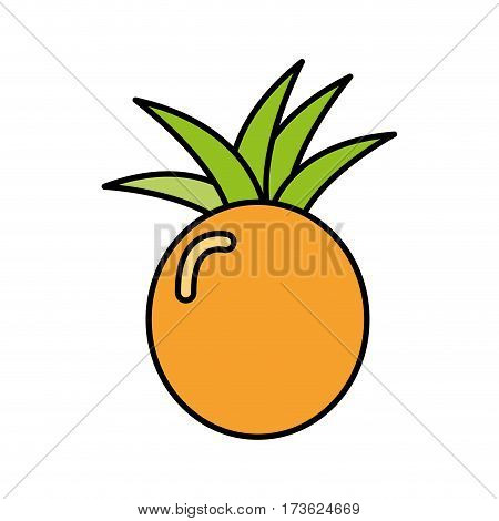 colorful pineapple fruit icon stock, vector illustration design