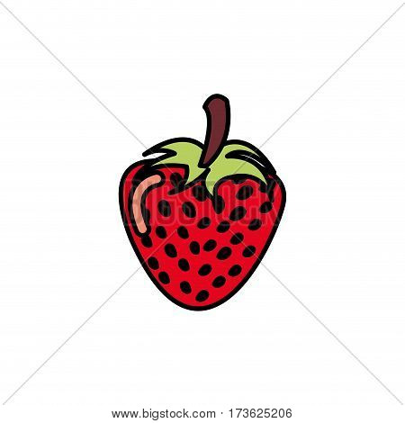 colorful strawberry fruit icon stock, vector illustration design