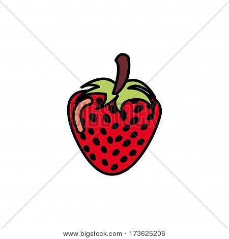 colorful strawberry fruit icon stock, vector illustration design