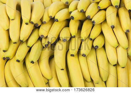 Fresh bananas stacked on pile