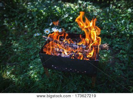 Burning coals in the mangal on the green grass background