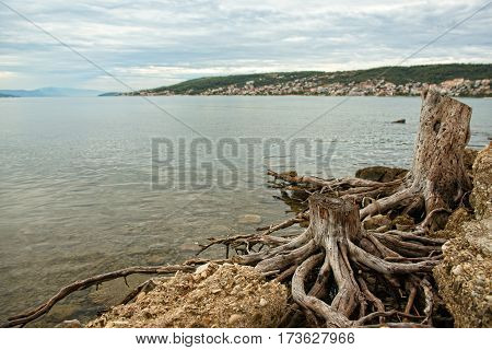 Adriatic sea, cute view of coraita sea