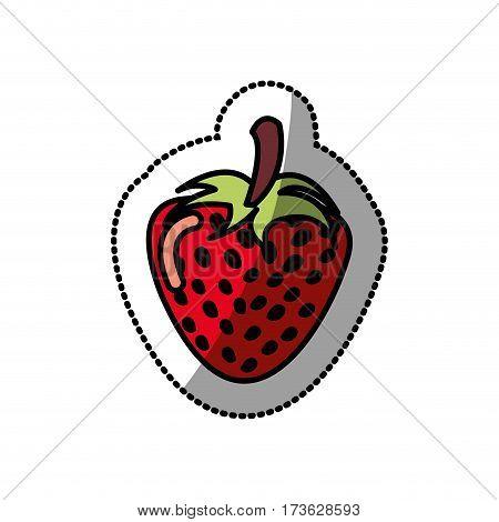 strawberry fruit icon stock, vector illustration design