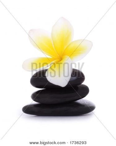 Black Pebbles And Frangipani