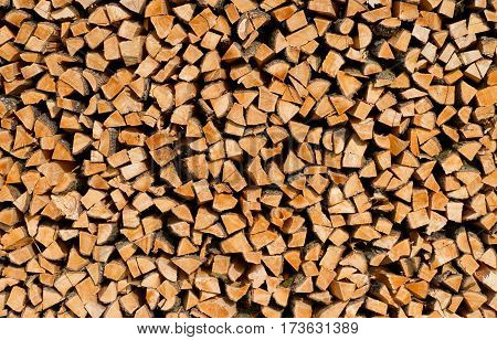 Stack of wood in the forest - background image