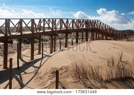 A wooden walkway leading to beach on sea.