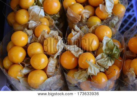 cape gooseberry Put in bag, Group of cape gooseberry