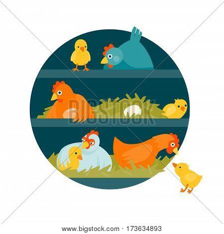Henhouse with funny birds in circle vector illustration cartoon style
