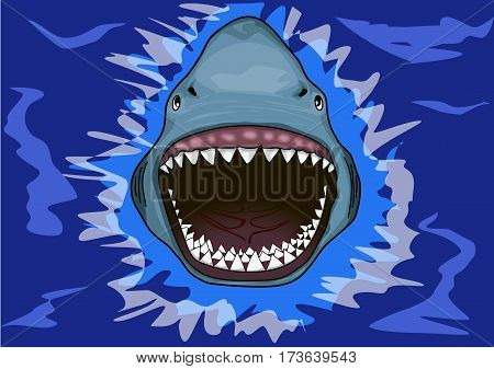 A terrible toothy shark in the water.