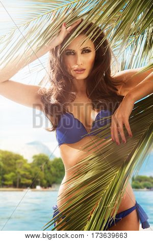 Woman In Bikini Under Palm On Sea Background