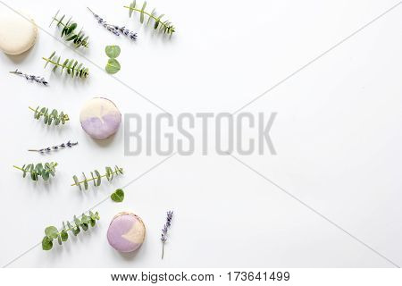 Spring pattern in pastel color with lavander macaroons and eucalyptus on white background top view mock-up