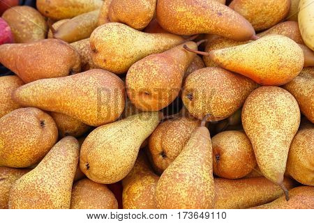 Big Bunch of Fresh Yellow Pears Fruits