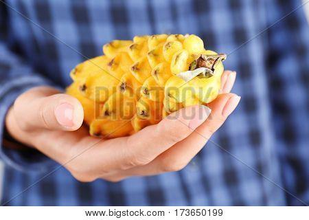 Woman holding pitahaya