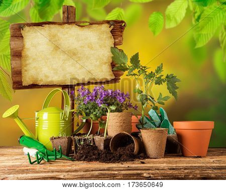 Gardening tools and flowers on wooden table, close-up.
