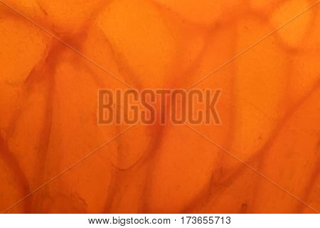 Extreme Close Up of Backlit Orange Slice background