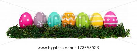 Row Of Hand Painted Colorful Easter Eggs In Green Moss Isolated On A White Background
