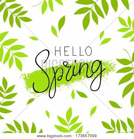 Hello spring. Calligraphy and lettering. Vector illustration. Green plant in the background. Concept card.