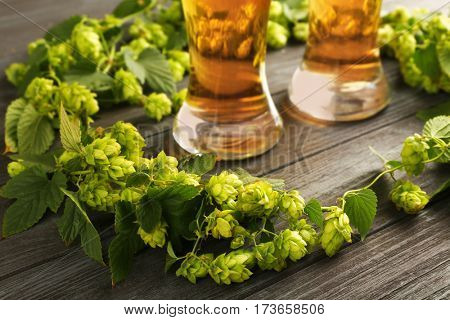 Glasses with beer and fresh hop on wooden background