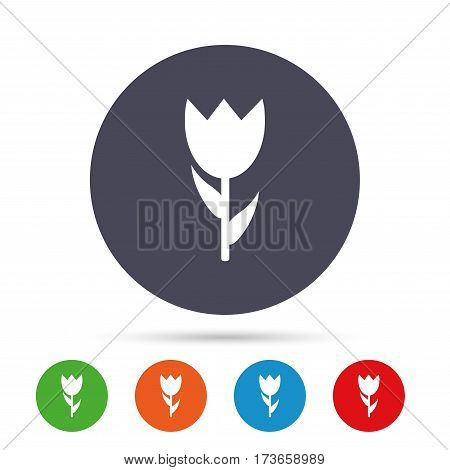 Flower sign icon. Rose symbol. Macro. Round colourful buttons with flat icons. Vector