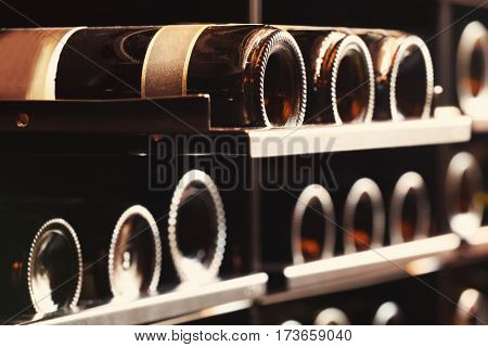 Wine bottles on shelf in winery cellar, closeup