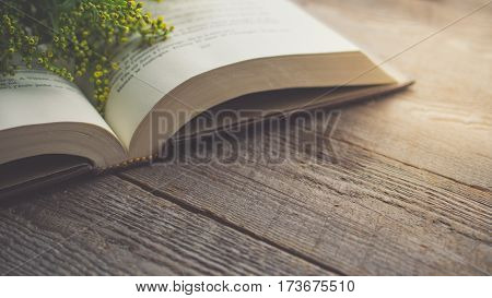Morning relaxation and cozy with Solidago small yellow flower on the book with copy space for woman lifestyle nostalgic concept