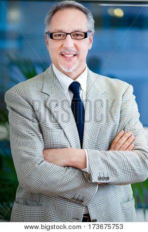 Mature businessman portrait in the office