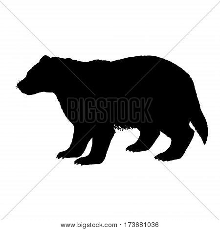 Badger silhouette. Hand drawn image. Black white icon. Vector illustration. Logo desing