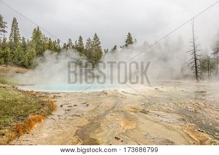 Silex Spring is in the Lower Geyser Basin in Yellowstone National Park