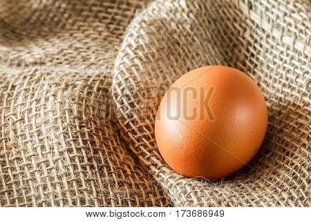 One brown egg lays on burlap. Macro with shallow dof