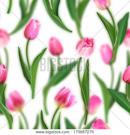 Floral seamless pattern. Realistic tulips with blurred tulips background. Watercolor imitation. Not trace. Vector seamless background. Pink tulips