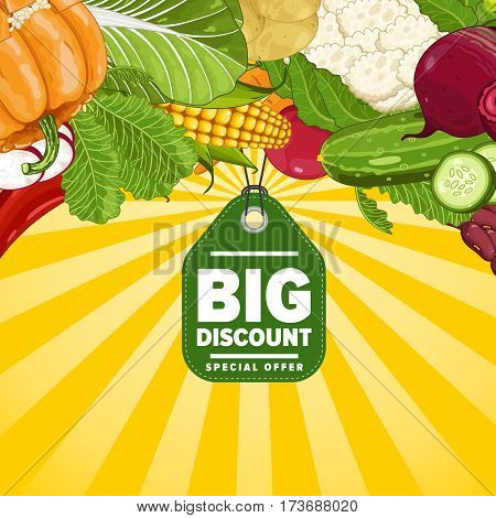 Big discount for farm food banner vector illustration. Natural vegetable sale, organic farming retail, vegan product store poster. Healthy farm food offer advertising with radish, cabbage, cucumber