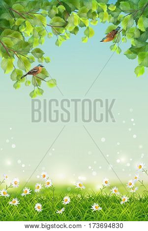 Vector summer landscape with two birds, grass, flowers, tree branches