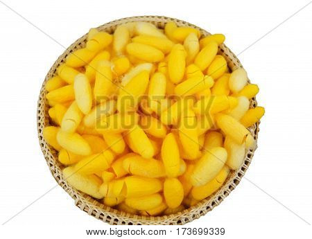 isolated pile of yellow cocoons in wooden basket